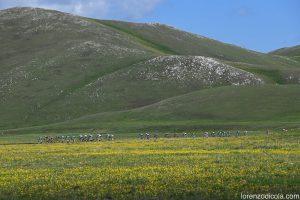 IMG 6229 300x200 - Passato il Giro d'Italia restano i stupendi paesaggi immortalati dagli scatti dei professionisti della fotografia. - Passato il Giro d'Italia restano i stupendi paesaggi immortalati dagli scatti dei professionisti della fotografia.